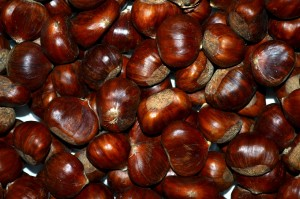 chestnuts-2859229_1280